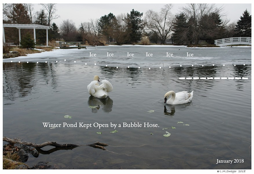 Pond Bubble Hose