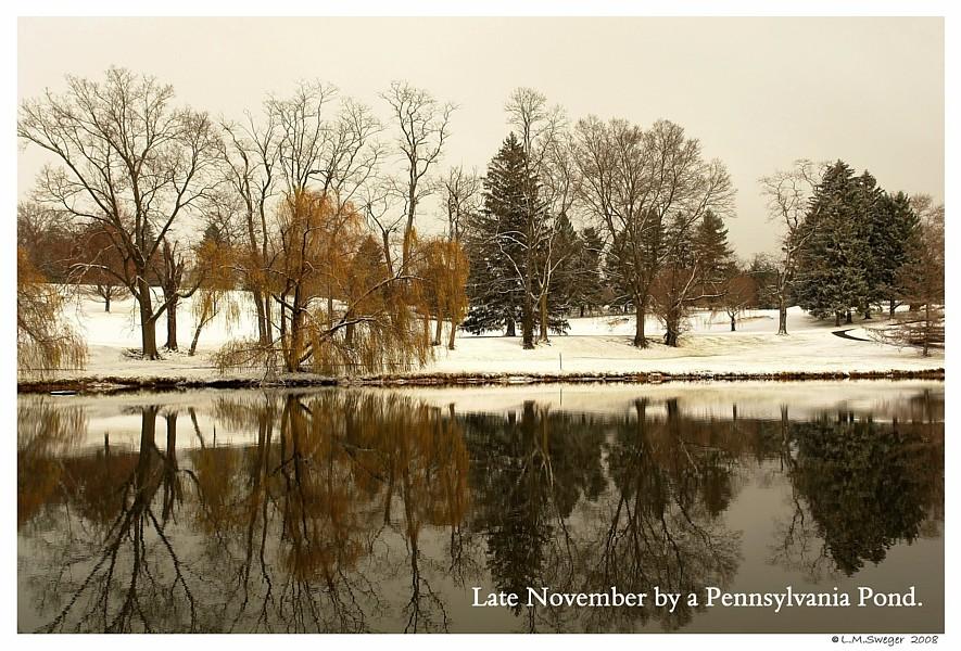 Swan Pond Late Fall