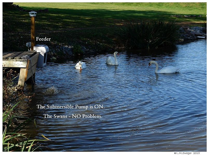 Swans Submersible Pump