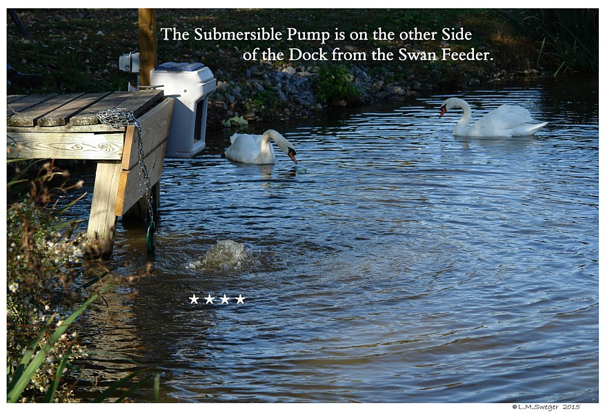 Submersible Pump In Pond