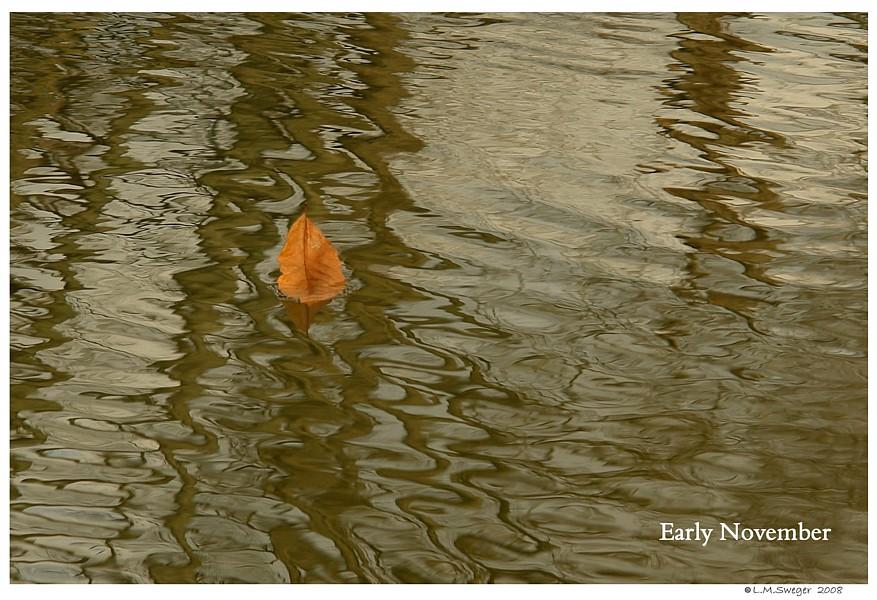 Pond Fall Leaf