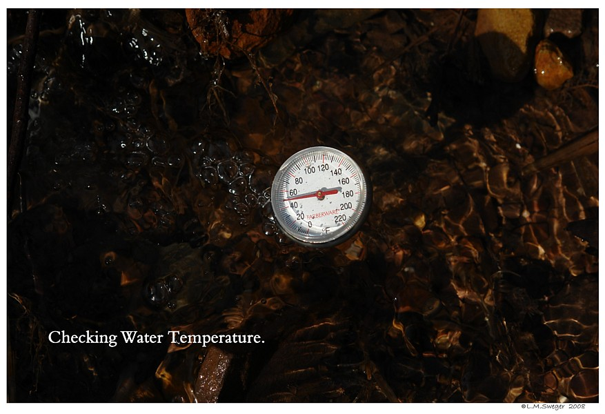 Pond Water Temperature