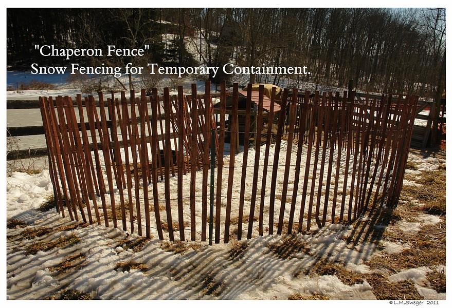Chaperon Fence