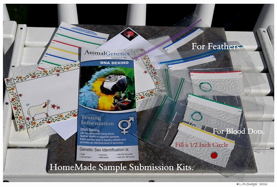 SWAN DNA-Test Kits