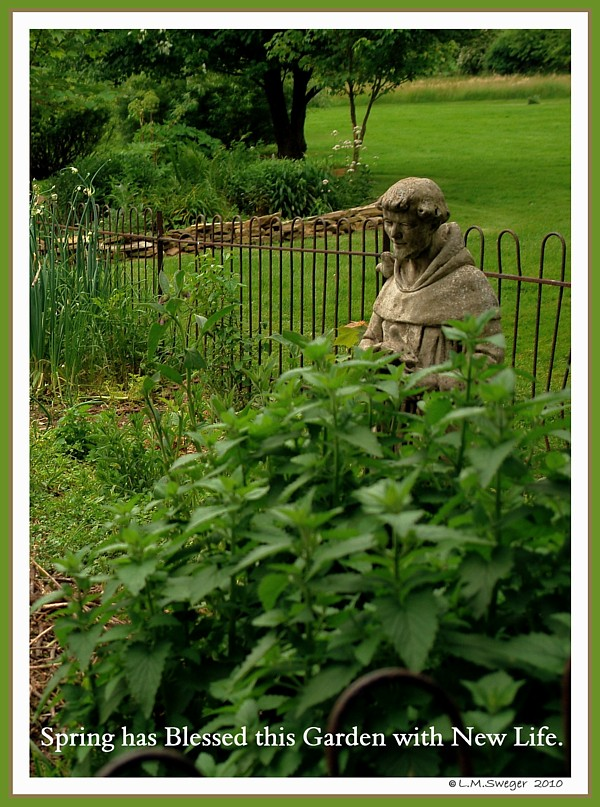 St.Francis Garden Nest