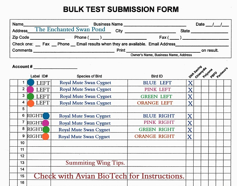 DNA Submission Form Swans DNA-Sex Testing