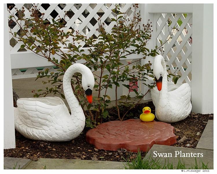 Mute Swan Planters