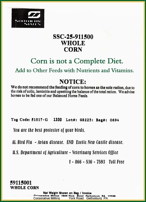 Commercial Bag Corn