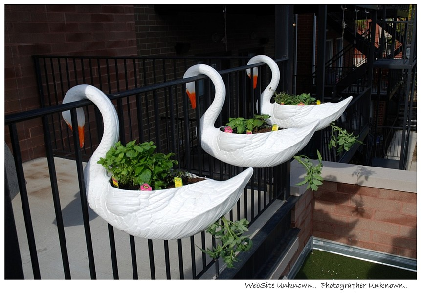 SWAN MUTEs FENCE Planter-Boxes