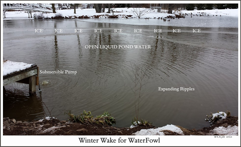 Winter Swan Pond Submersible Pump
