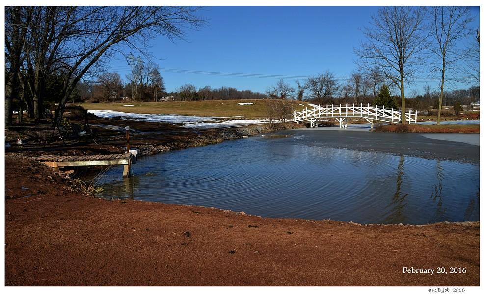 Winter Swan Pond Submersible Pump