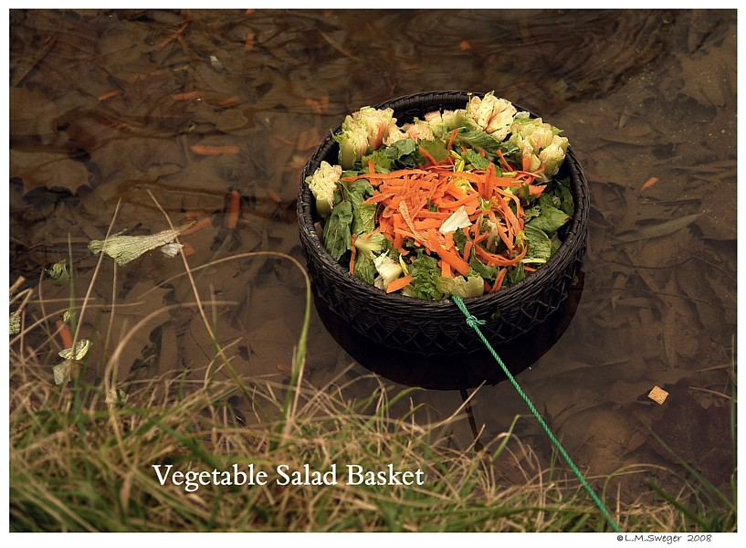 Swan Vegetable Basket Swans are Vegetarians
