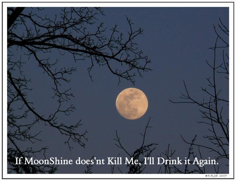 Feed Fermenting Moonshine