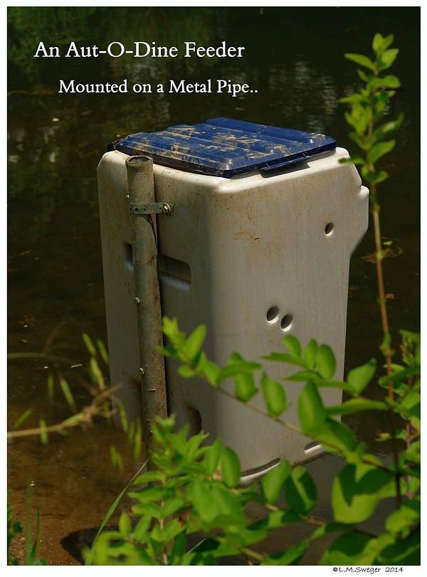 Aut-O-Dine 25 Pole Mount