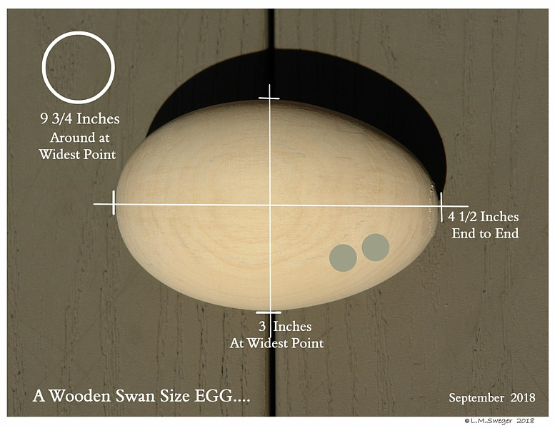 SWAN REPLACEMENT EGGs Measurements