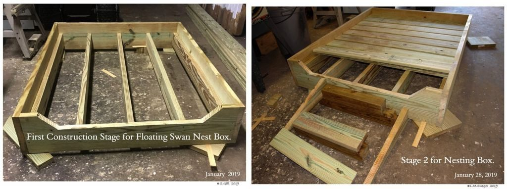 SWAN FLOATING NEST Box-Platform