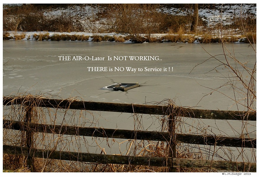 Swan Winter Wake Air-O-Lator DeIcer