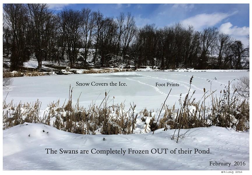 Keeping Open Water Winter Wake