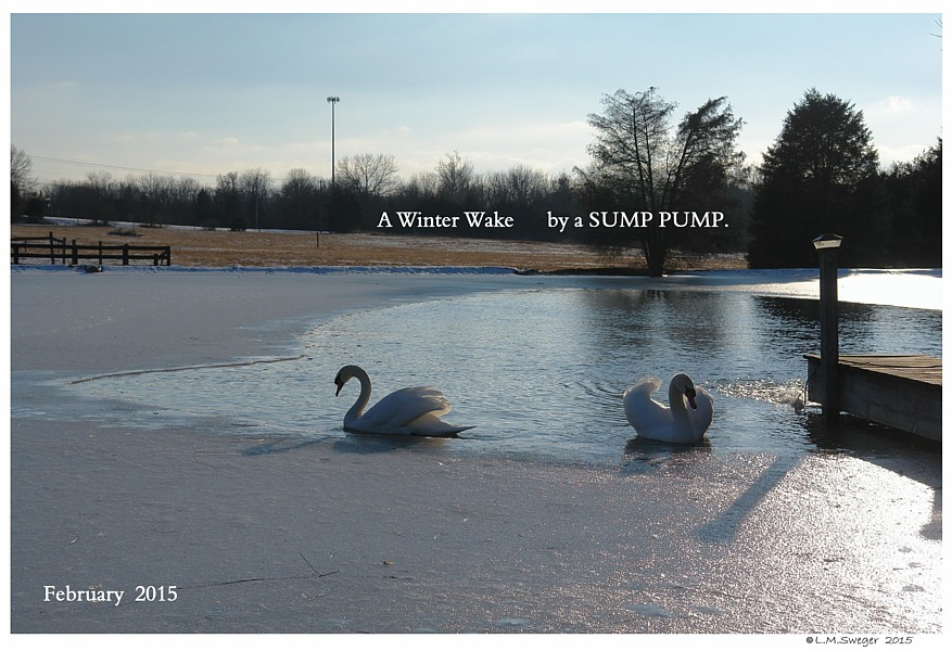 DeIcing with a SUMP PUMP